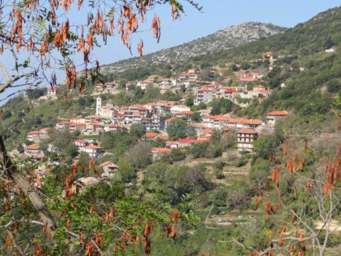 Διαγωνισμός για την κατασκευή ξενώνα στο χωριό Σέρβου Γορτυνίας